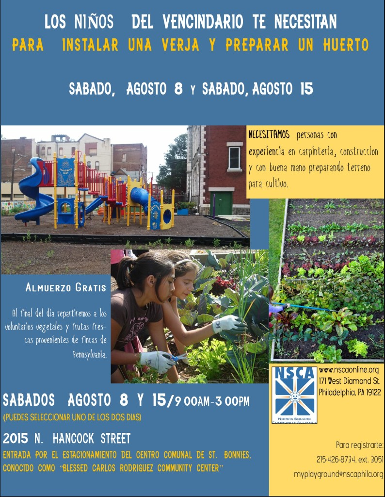St Bonnies Skilled Volunteer Ask Aug 2015 Espanol